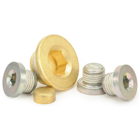 Engine Plug Kit - Suit GM LS Series Engines